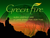 Green Fire (Short Version)